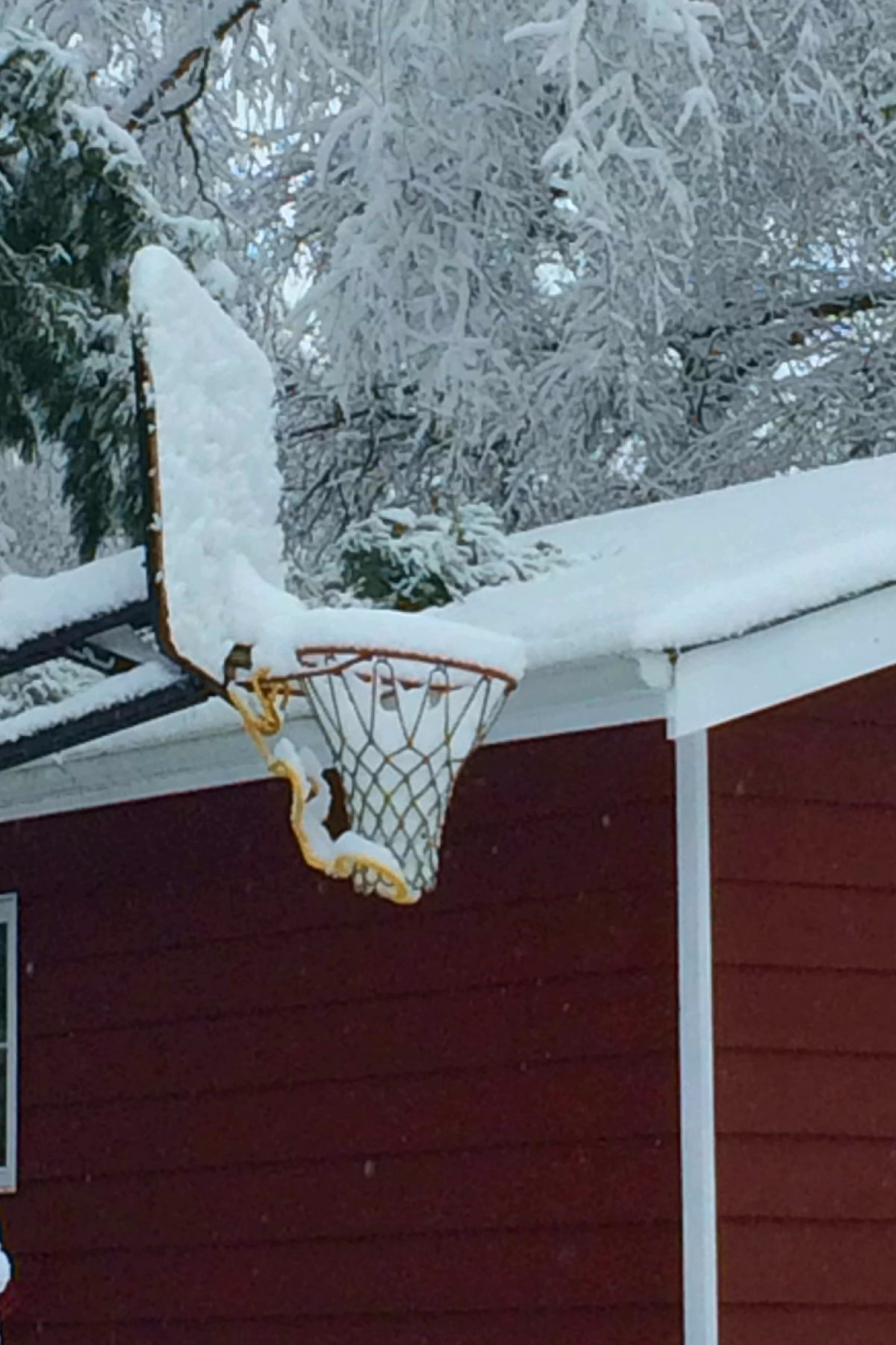 Winter Basketball Hoop At Carden Sm
