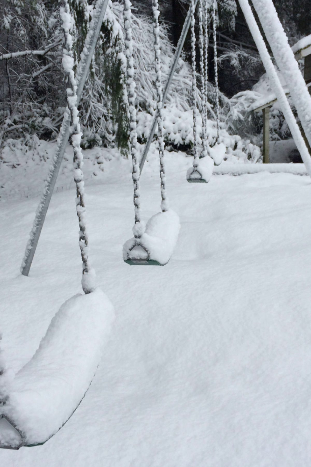 Winter Swings At Carden Sm