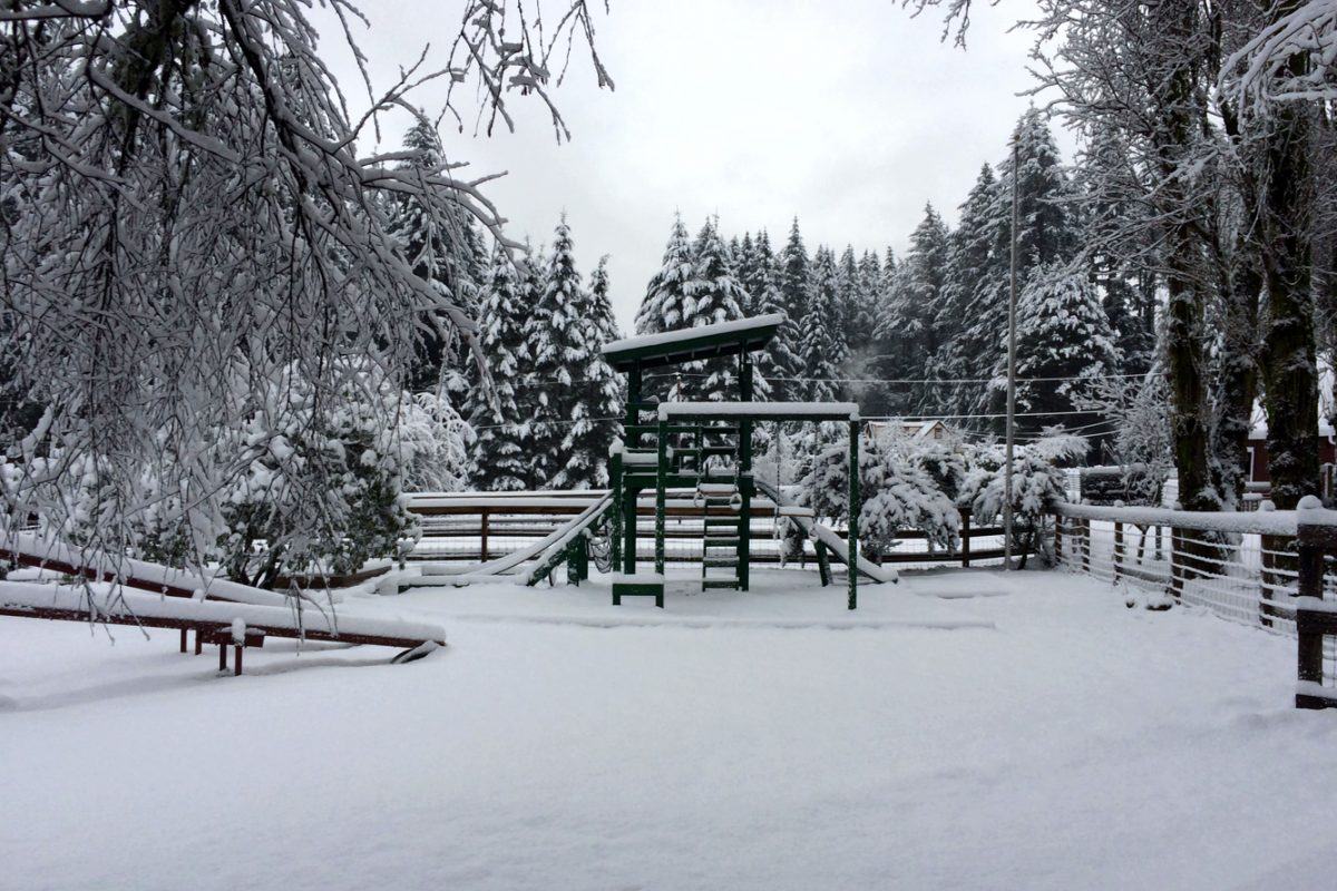 Winter Play Yard At Carden Sm
