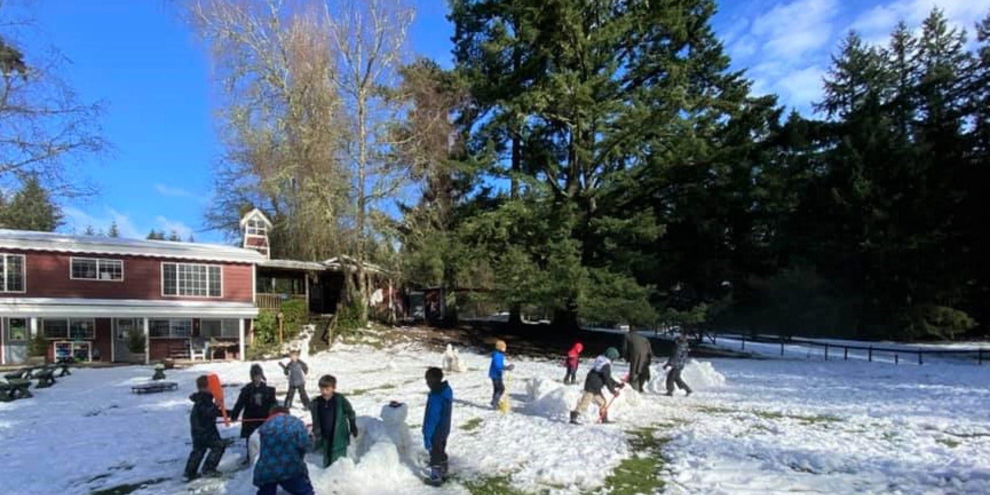 Carden Snow 2021 Pe