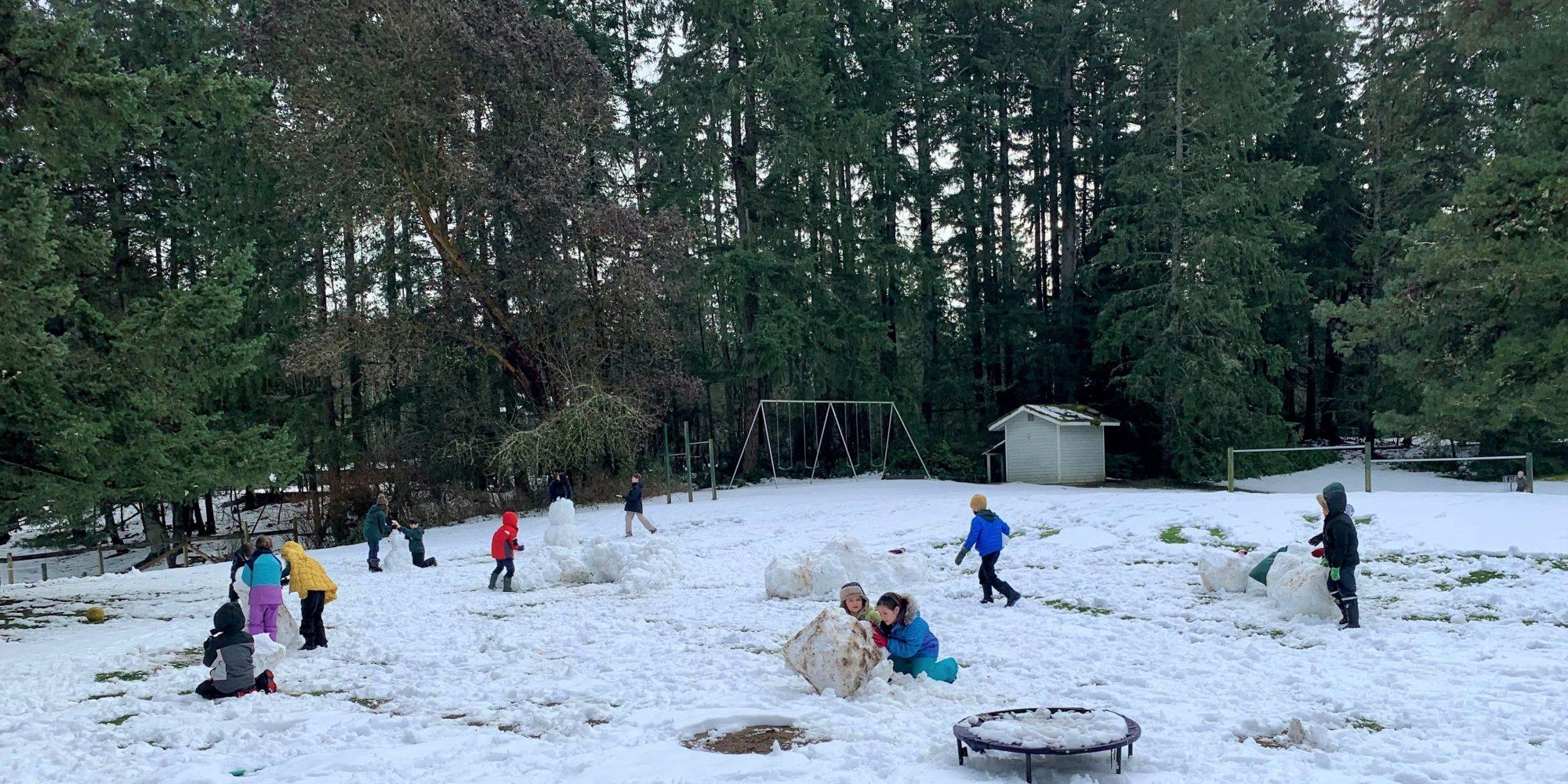 Carden Snow 2021 Lower Yard E
